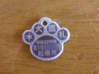 鑑札[1].JPG