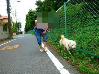 てつとお散歩.jpg
